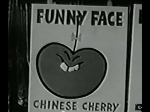 "Old Commercials That Would Be ""Politically Incorrect"" Today"