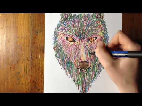 Coloring The Wolf Face