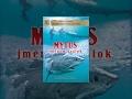 Mýtus jménem žralok  | celý film