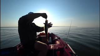 Спиннинговая рыбалка с берега. Выбор приманки