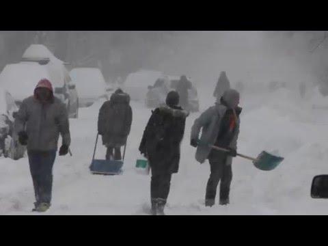 Ottawa 42cm Snowstorm - 2016