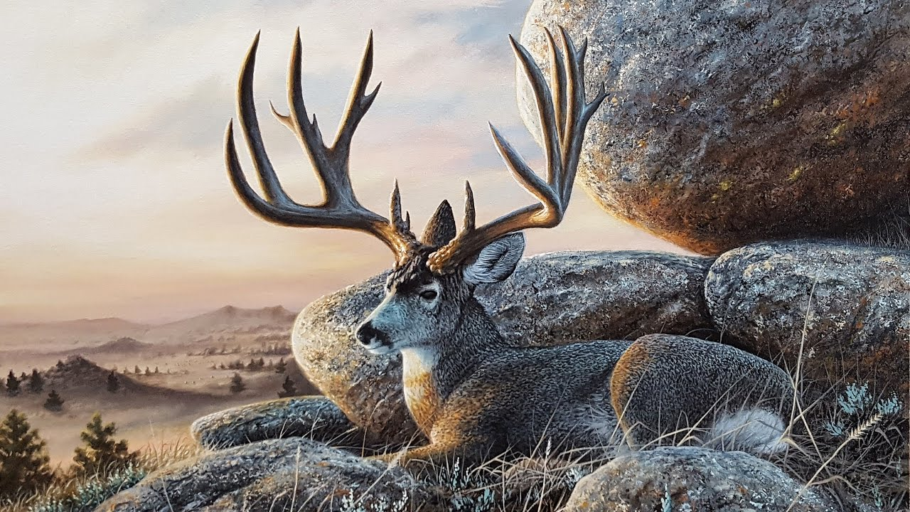 Landscaping Ties Red Deer : Acrylic landscape speed painting mule deer at sunset