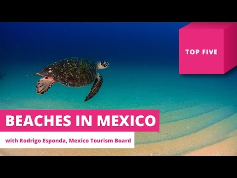 The Top 5 Beaches in Mexico