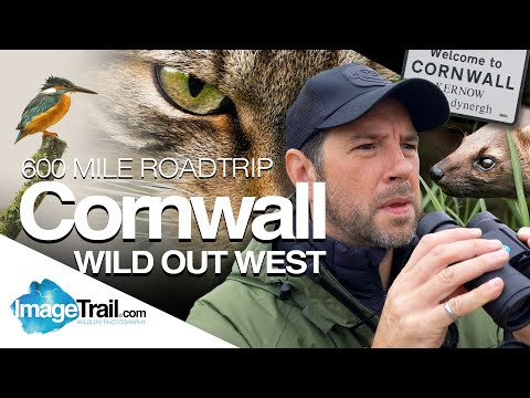 Wild Out West - 600 mile roundtrip to Cornwall