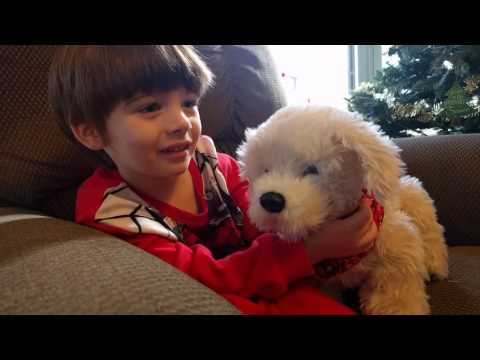 Georgie Interactive Plush Electronic Puppy Review - our Westie attacked him...FUNNY!