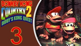 Donkey Kong Country 2 (SNES) playthrough pt3 - Diving in the Dark/Hive Hijinks