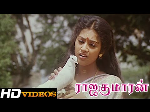 Chinna Chinna Sol Eduthu... Tamil Movie Songs - Rajakumaran [HD]