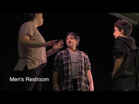 Transgender Youth Legislative Theatre - Project Summary
