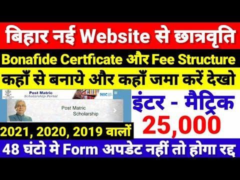 New Website से Inter Matric Scholarship -48 घंटो में Form अपडेट नहीं तो रद्द - Bihar Board 12th 2021