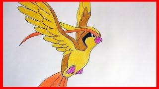 How to draw pokemon Pidgeot № 18
