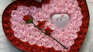 Enna kadhalichi kaltharatha vanitha love song video