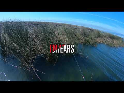 Locating and catching Springtime Spawning Bass on the Cal Delta