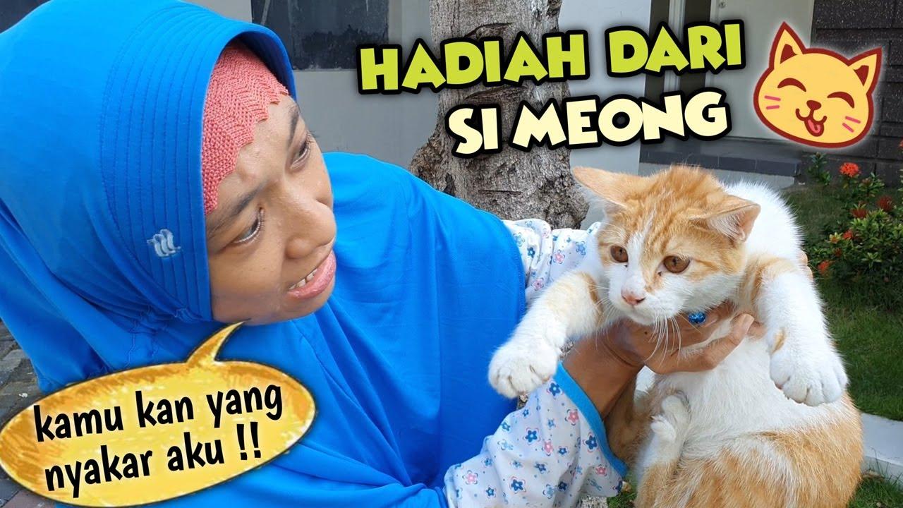 Kunyit Dapat Hadiah Spesial Dari Si Kucing Meong 😄 Asti Kunyit Eps 49