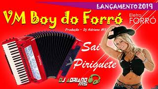 Dj Adriano MS Ft. VM Boy do Forró - Sai Piriguete (Eletro Forró 2019)