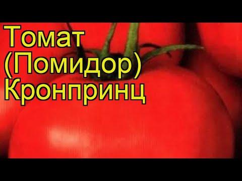 Томат обыкновенный Кронпринц. Краткий обзор, описание характеристик, где купить семена