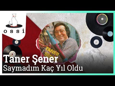 Taner Şener - Saymadım Kaç Yıl Yoldu