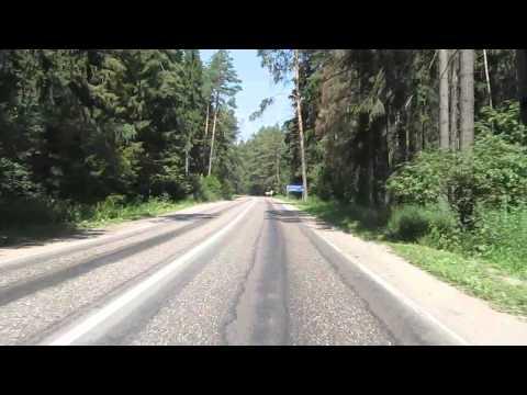 Красивая дорога по лесу
