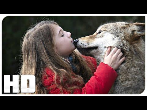 Мой волк - Русский трейлер (2021)