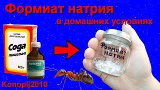 Формиат натрия в домашних условиях
