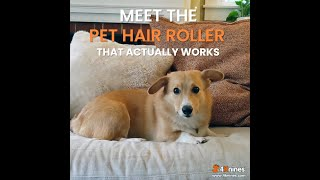 Reusable Pet Hair Roller  For Dogs, Cats And Other Pets  For Your Couch, Bed, Clothing And More