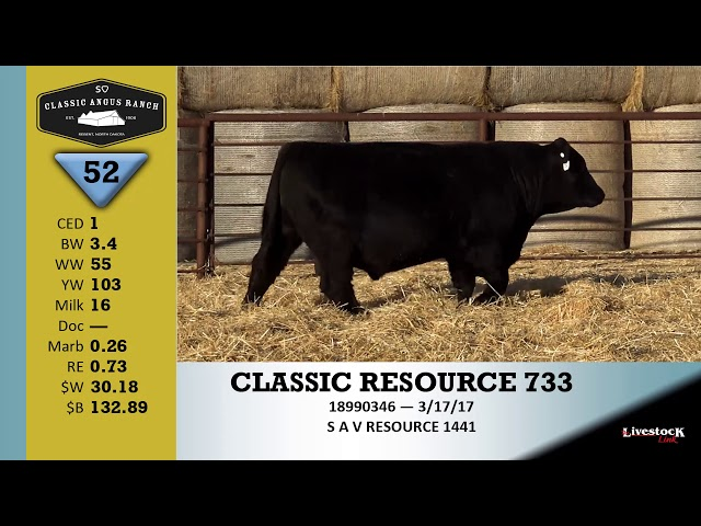 Classic Angus Ranch Lot 52