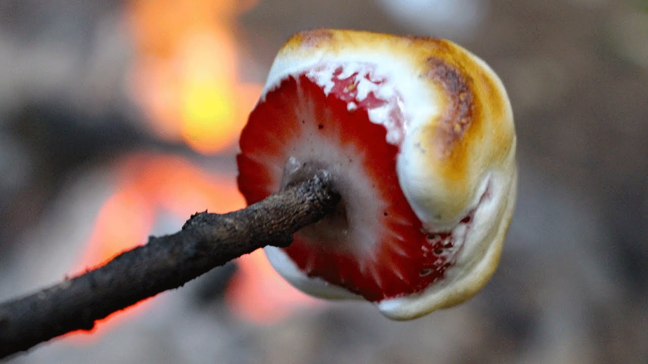 10 Best Campfire Snacks Camping Foods And Campfire Cooking
