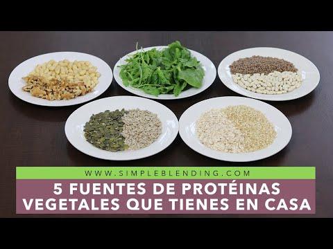 Fuentes de proteína vegetal   Cómo conseguir proteínas de origen vegetal fácilmente