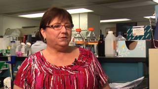 UT Veterinary Virologist Discusses Canine Distemper Virus