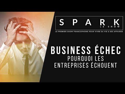 BUSINESS ÉCHEC - Pourquoi les entreprises échouent - Spark le Show I Franck Nicolas