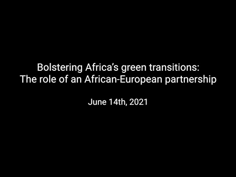 Bolstering Africa's green transitions: The role of an African-European partnership