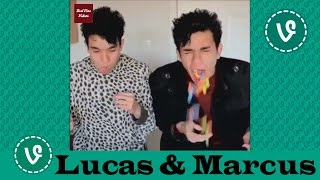 Lucas and Marcus VINES ✔★ (ALL VINES) ★✔ NEW HD 2016