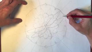 Illustration Process Video : Sketching the Layout for my Dragonfly Mandala