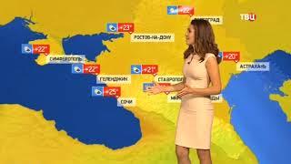 Погода сегодня, завтра, видео прогноз погоды на 17.10.2018 в России и мире