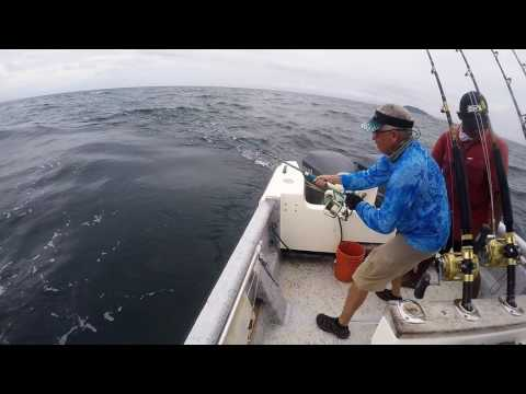 Hannibal Bank  Fishing Trip - Panama 2017