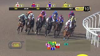 Vidéo de la course PMU PRIX ALWAYS CERTAIN 2011 STAKES