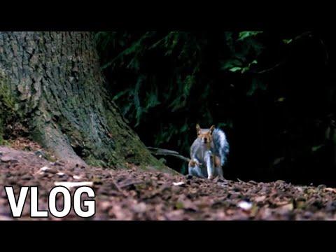 Видео: VLOG : Across the pond - Dunfermline + North Queensferry #Lewiswatsonvlogs