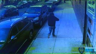 Video shows group chase down, fatally shoot man in Brooklyn: police