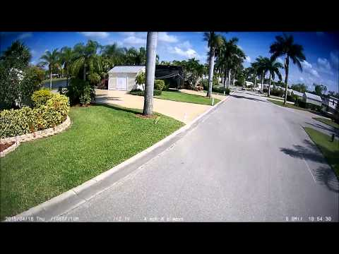 Southern Palms Rv Resort Eustis Florida Doovi
