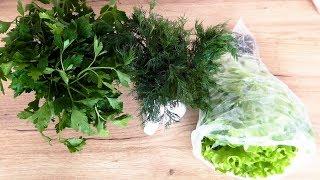Лайфхак как сохранить зелень свежей !***Life hack how to keep greens fresh