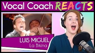 "Vocal Coach reacts to Luis Miguel - ""La Bikina""  Live En Vivo"