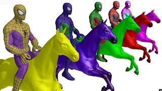 LEARN COLORS With Spiderman Colors Riding Horse  Colours For Kids