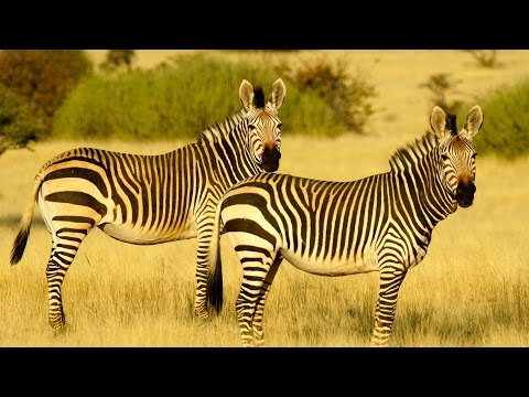Namibia 2016 Photography Adventure Tour