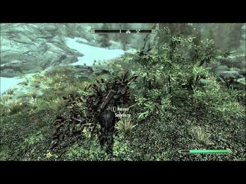 Skyrim : Good mining locations!
