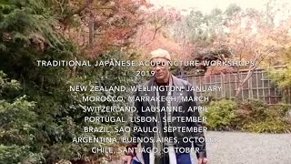 Traditional Japanese Acupuncture Workshops 2019