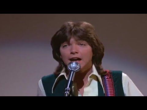 David Cassidy Dies of Organ Failure at 67