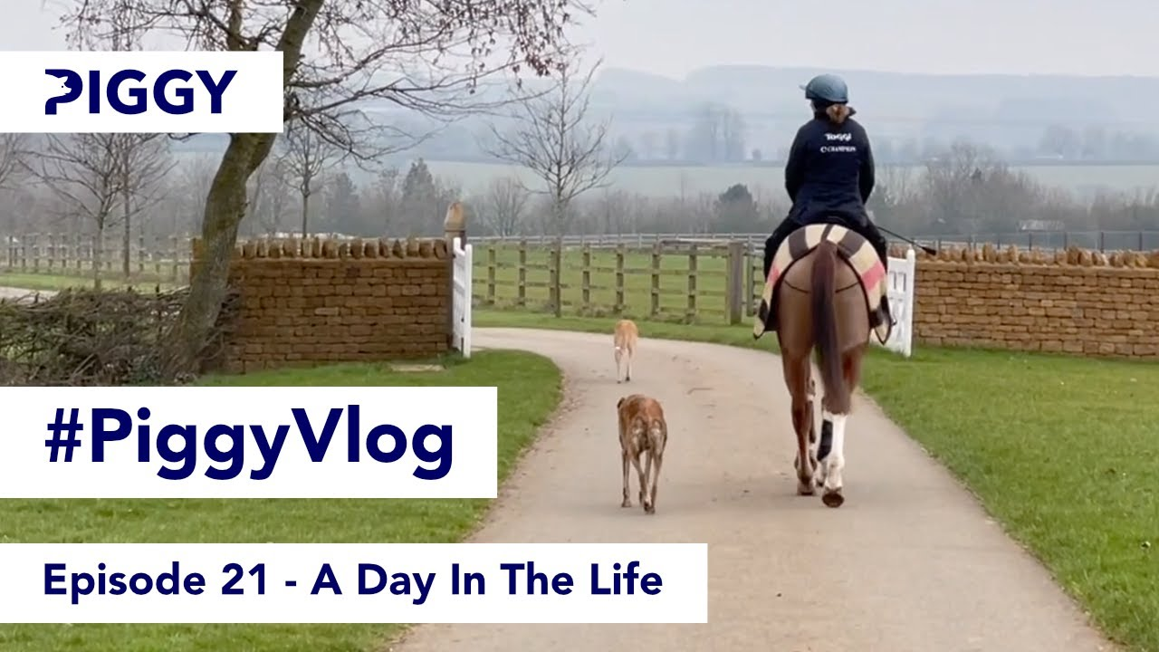 A Day In The Life | Episode 21 | #PiggyVlog​ 2021