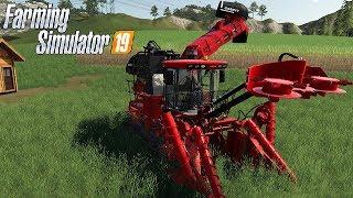 FARMING SIMULATOR 19 #166 LIVE - DEBITI E TERRENO 31 FERMO DA SETTIMANE - GAMEPLAY ITA