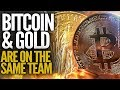 Bitcoin Gold review - The Ultimate Money Guide to BTG ...