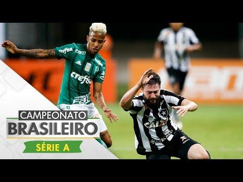Melhores Momentos - Palmeiras 2 x 0 Botafogo - Campeonato Brasileiro (27/11/2017)