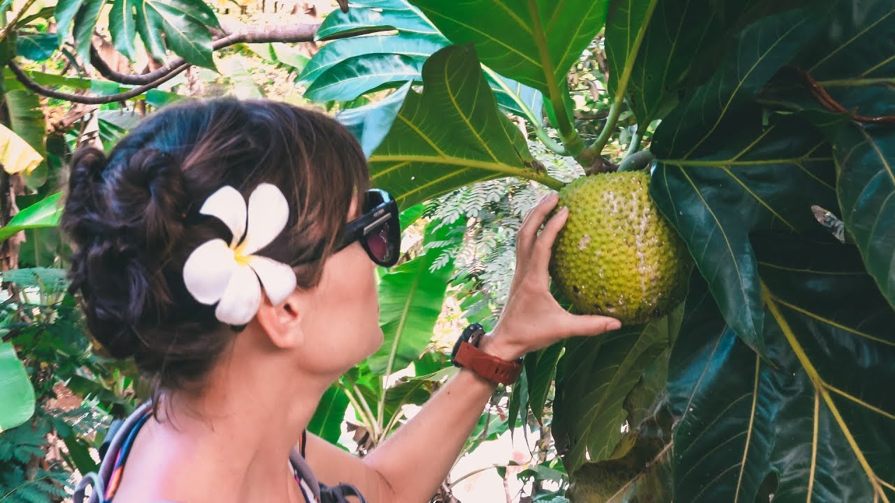 our-first-taste-of-land-a-walkabout-hiva-oa-french-polynesia